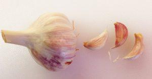 pink-garlic